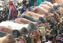 কোরবানিতে এক গরুতে কতজন শরিক হওয়া যাবে